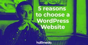 5 Reasons to choose a Wordpress Website