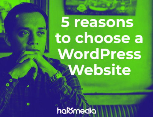 5 Quick Reasons why a WordPress Website is a good choice