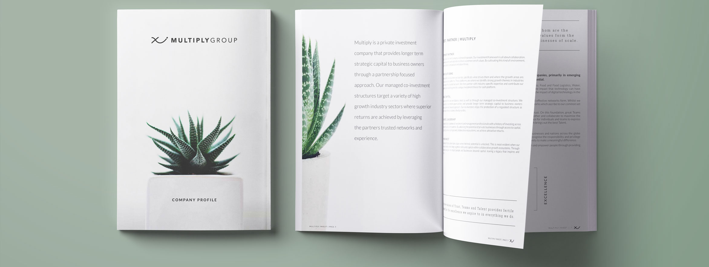 Brochure design and marketing for private equity, private investment and joint venture company