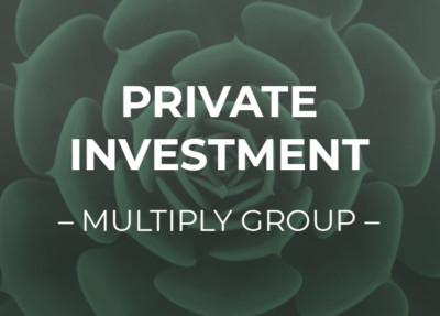 Logo design and marketing for investment company - private equity and joint venture