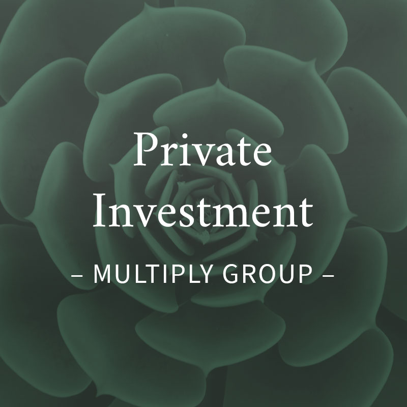 Private Investment Marketing and Design in UK, South Africa